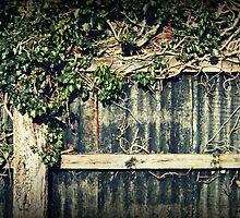 Farm fence by JHuntPhotos