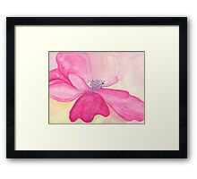 Pretty but Poisonous Windflower Framed Print