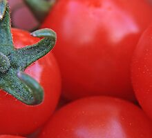 Cherry Tomatoes by JHuntPhotos