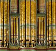 Green and gold organ pipes by churchmouse
