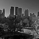 Central Park, Manhattan by JMChown