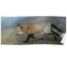 Red Fox Encounter Poster