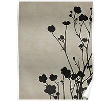 Buttercups in Beige & Gray Poster