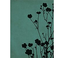 Buttercups in Blue & Gray Photographic Print
