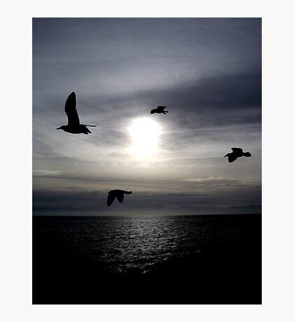 Ocean Shadows Photographic Print