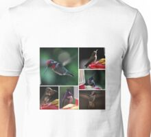 COLLAGE OF  HUMMINGBIRDS NUMBER 2 Unisex T-Shirt