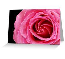 rose interior Greeting Card