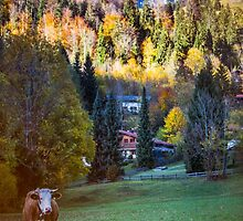 Autumnal Bayrischzell  by Boston Thek Imagery