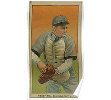 Benjamin K Edwards Collection Tom Needham Chicago Cubs baseball card portrait Poster