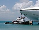 Large Cruise Ship and Little Tug Boat by Gerda Grice