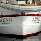 Auno in Lerwick by NordicBlackbird