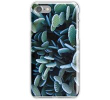 Cactus 001 iPhone Case/Skin