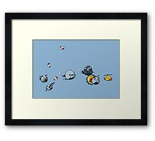 RCAF Birds Framed Print