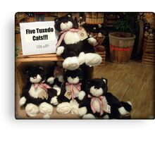 Five Charming Tuxedo Stuffed Cats For Sale! Canvas Print