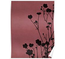Buttercups in Pink & Gray Poster