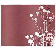 Buttercups in Pink & White Poster