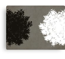 Queen Anne's Lace in Gray & White Canvas Print