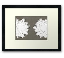 Queen Anne's Lace in Gray & White Framed Print
