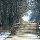 The Lake Road In January by Geno Rugh