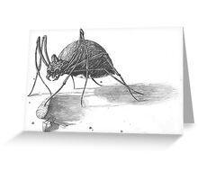 The Adventurer meets a Giant Spider Greeting Card