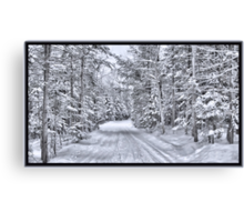 Winter Wonderland ~ A Snow-covered Forest Road in a Wintry Landscape after a Snow Storm Canvas Print