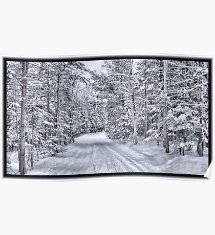 Winter Wonderland ~ A Snow-covered Forest Road in a Wintry Landscape after a Snow Storm Poster