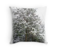 Frosty Snow Covered Pine Trees in a Scenic Wintry Forestscape after a Winter Storm in Quebec Throw Pillow