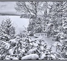 Abandoned and Forgotten - A Dilapidated Fishing Vessel Surrounded by Snowy Pine Trees near a Frozen Lake by Chantal PhotoPix