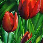 Red Tulips by Przemysław Bródka