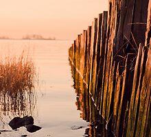Cove Sunrise pt5 by Matt  Grindle