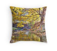Autumn Tree And Creek Throw Pillow