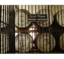 Whisky Sleeping Photographic Print