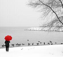 Canadian Geese by DebraLee Wiseberg