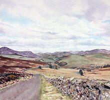 Glen Isla from the Kilry Hill by Joyce Grubb