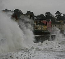Stormy Dawlish by Tony Steel