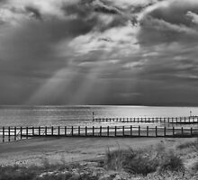 Reaching for the sea 2 by moor2sea