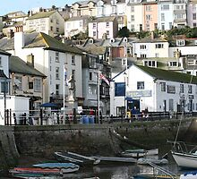 Brixham Harbour by Tony Steel