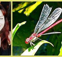 Large Red Damselfly & Me by ©The Creative  Minds