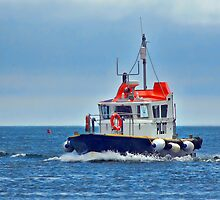Pilot Boat ~ Teignmouth by Susie Peek