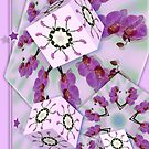Orchid Cubed by viennablue