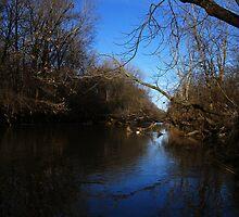 Blue Sky in the Water by Gu88dek