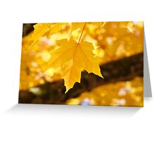 Yellow Autumn Leaf art prints Fall Leaves Greeting Card