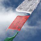 Prayer Flags iPhone Case by Jan Vinclair