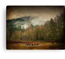 Elven meeting Canvas Print