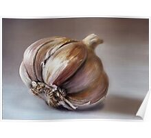 Classic still life garlic painting Poster