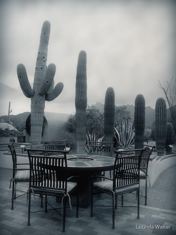 A Gentle Winter Rain by Lucinda Walter