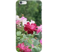 A Rose Bush with Roses and a Bee iPhone Case/Skin
