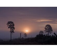 Holt Heath sunrise Photographic Print