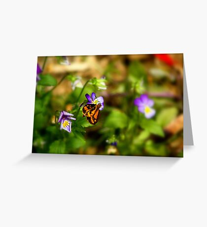 TEENY WEENY BUTTERFLY Greeting Card