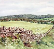Looking towards Kinnettles, Angus by Joyce Grubb